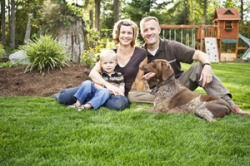South Charlotte Residential Pet Waste Removal Rates